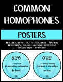 Common Homophones Poster Set