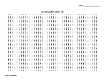 Common Insects Vocabulary Word Search for an Ag. Science Entomology Course