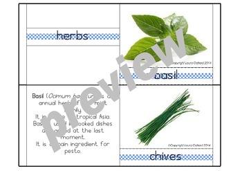 Common Kitchen Herbs