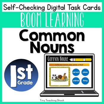 Common Noun Boom Cards