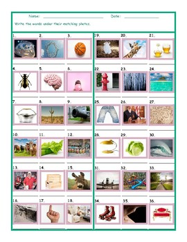 Common Nouns Fourth Grade Worksheet