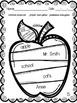 Common Nouns, Proper Nouns, and Possessive Nouns
