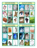 Common Nouns Second Grade Tic-Tac-Toe-Bingo Game