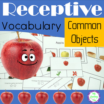 Common Object Names. Receptive Vocabulary Language Activities