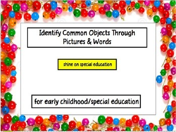 Common Objects Set One - Adapted Book/File Folder