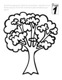 Common & Proper Noun Apple Tree