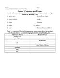 Common and Proper Noun Activity/Assessment