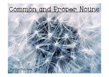 Common and Proper Noun Center game