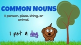 Common and Proper Noun Posters