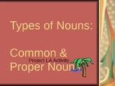 Common and Proper Noun PowerPoint - Great Formative Assessment