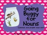 Common and Proper Noun Sort Center