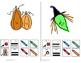 Communication Symbol Sentence Practice Bundle Describe & Locate