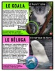 French Oral language / Listening assessment/ Likes and dislikes/ Les Animaux