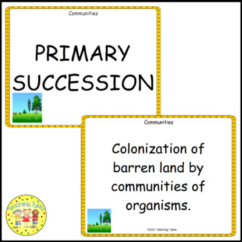 Communities Vocabulary Cards