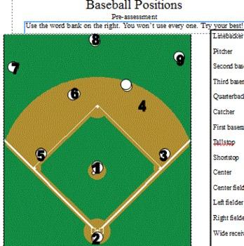Community Based Instruction Baseball Trip (positions pre-assessment)