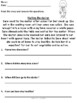 Community Helpers Reading Comprehension Worksheets (Guided Reading Tasks)