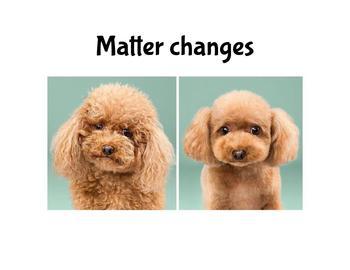 Cómo Cambia la materia/ How Matter changes