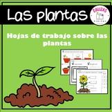 Cómo crecen las plantas