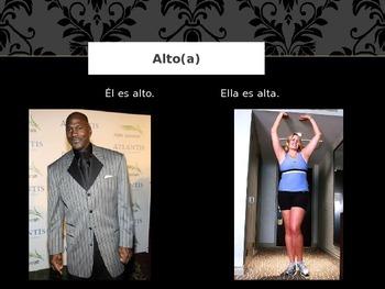 Como es?  Spanish PowerPoint on Descriptions/Adjectives