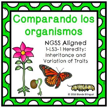 Comparando los organismos ~ Comparing Organisms (Spanish)