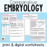 Comparative Embryology - Guided Practice - Print & Google