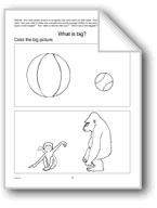 Comparatives (Big-Small, Tall-Short) Homework