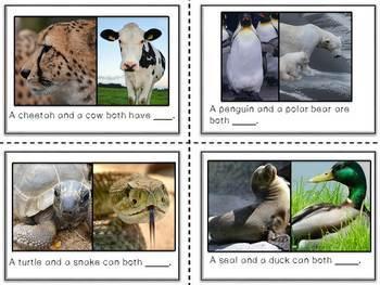 Compare Animals {ESL}