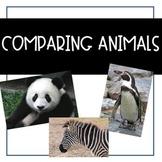 Compare Animals {ESL} (Kindergarten Wonders Unit 7 Week 1)