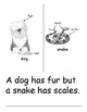 Compare Animals - Student text - Close reading/ writing