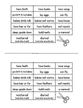 Compare & Contrast: Bats vs. Birds {venn diagram freebie}