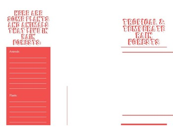 Compare & Contrast Brochure Template