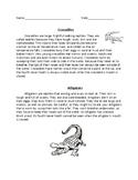 Compare & Contrast: Crocodiles and Alligators