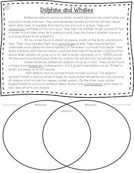 Compare & Contrast Informational Bundle - Common Core Aligned