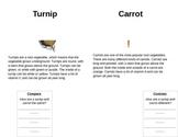 Turnip/Carrot Compare & Contrast mini lesson (2nd grade)