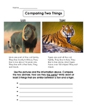 Compare and Contrast Activity Sheets