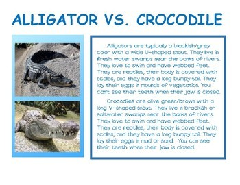 Compare and Contrast informational text: Alligator and Crocodile