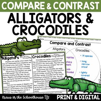 Compare and Contrast Alligators & Crocodiles - Reading Com