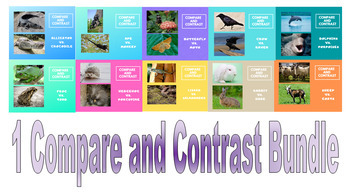 Compare and Contrast Animal Facts