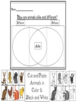 Compare and Contrast Animals Flip Book Activity CCSS