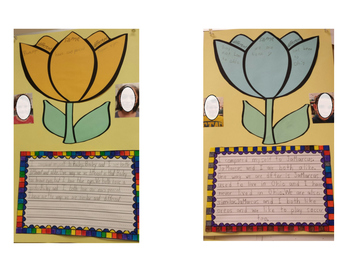 Compare and Contrast Craft and Writing Activity