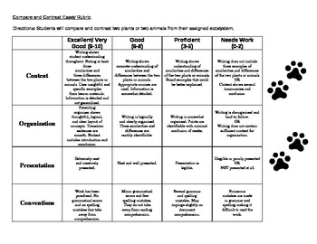 compare and contrast project rubric