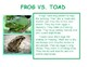 Compare and Contrast informational text: Frog and Toad facts