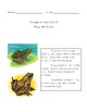 Compare and Contrast Frogs/Toads