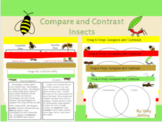 Compare and Contrast Insects-Digital