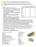 Compare and Contrast:  Photosynthesis and Cellular Respiration Chart