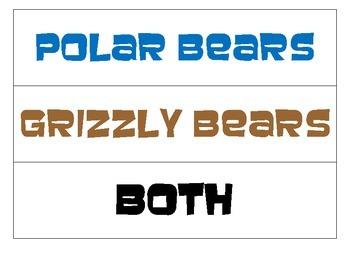 Compare and Contrast (Polar Bear VS Grizzly Bear)