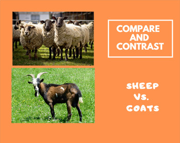 Compare and Contrast informational text: Sheep and Goats