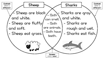 Compare and Contrast / Venn Diagram / Graphic Organizer Worksheet - Reading