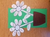 Compare and contrast Flower Activity