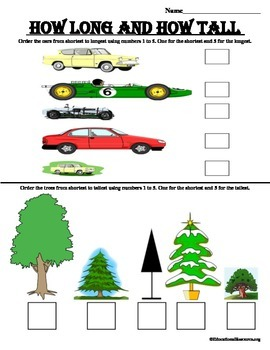 Compare length and height worksheet
